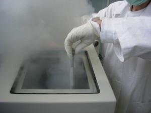 Vkladanie pupočníkovej krvi v kovovom puzdre do kryokonzervačného zariadenia